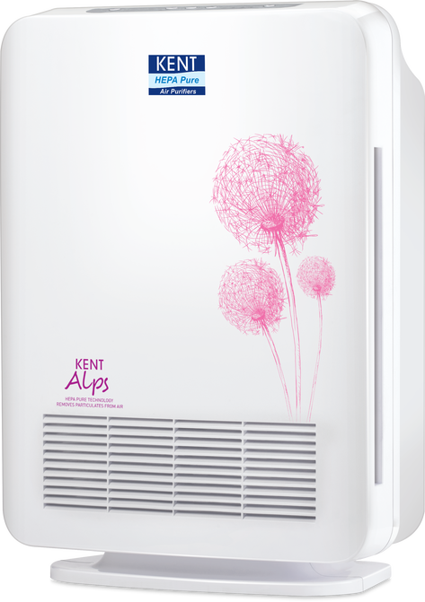 Can a Room Air Purifier Be Used in a Car?