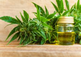 The Truth About Chronic Pain And Medical Cannabis